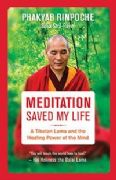 Meditation Saved My Life - Phakyab Rinpoche